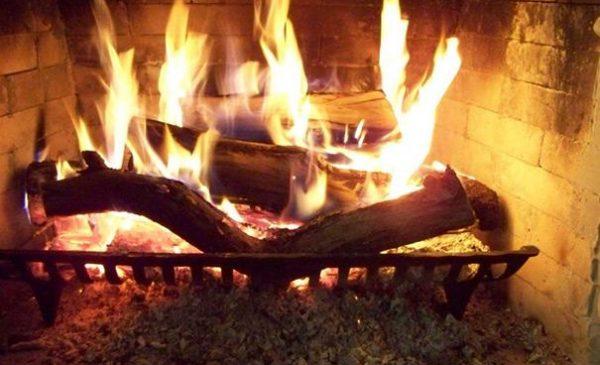 vendita acacia legna ardere